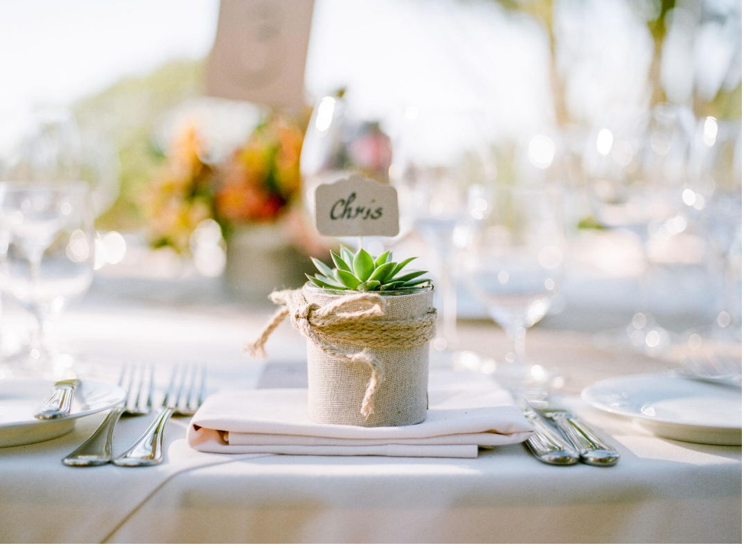 succulent favor seating chart