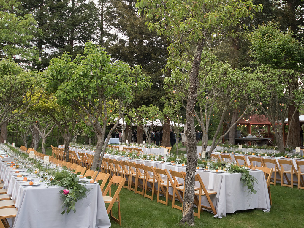 outdoor wedding reception seating orchard natural chairs greenery wedding runners